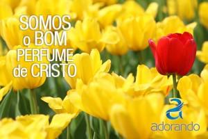 Somos o bom perfume de Cristo